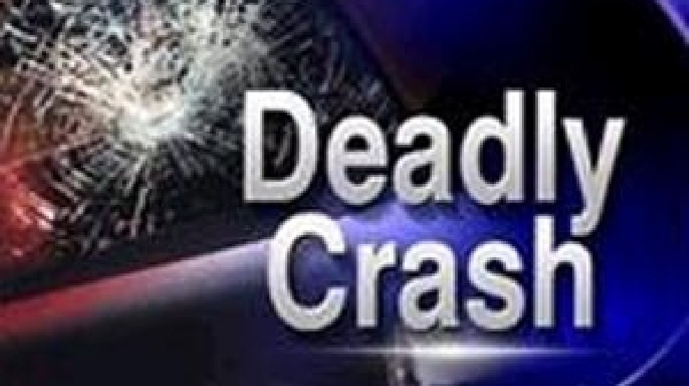 Pedestrian hit by car on Hwy  501 dies hours after crash | WPDE