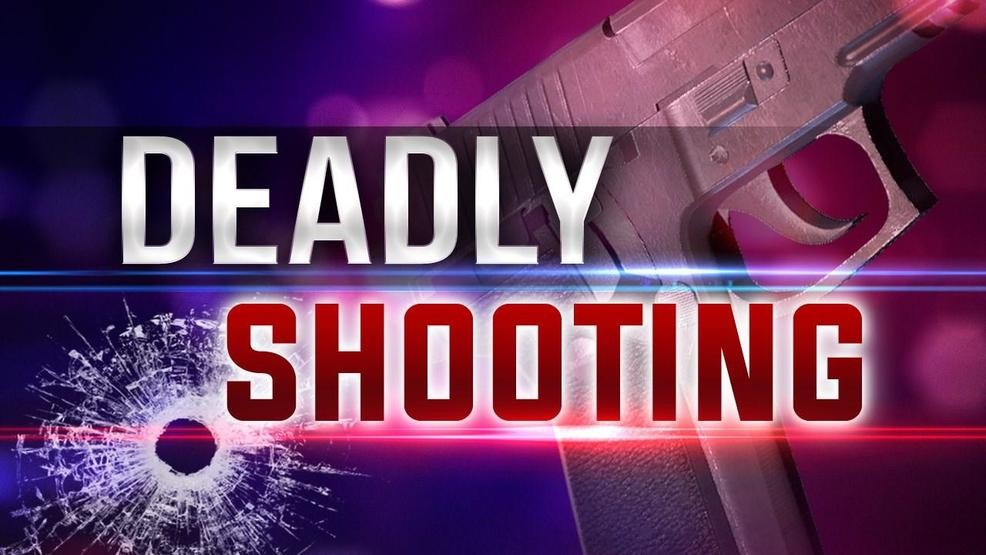 Image result for deadly shooting graphic